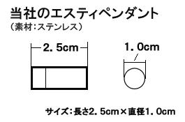 当社のエスティペンダント(ニトロケース:薬用ロケットペンダント)超軽量8g